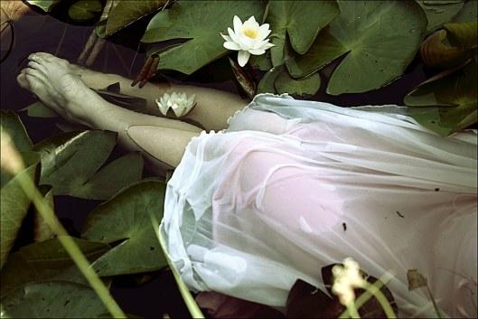 where_the_wild_roses_grow____by_zwerchwerk