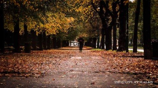autunno-uomo-che-cammina-parco-sempione-arena-milano