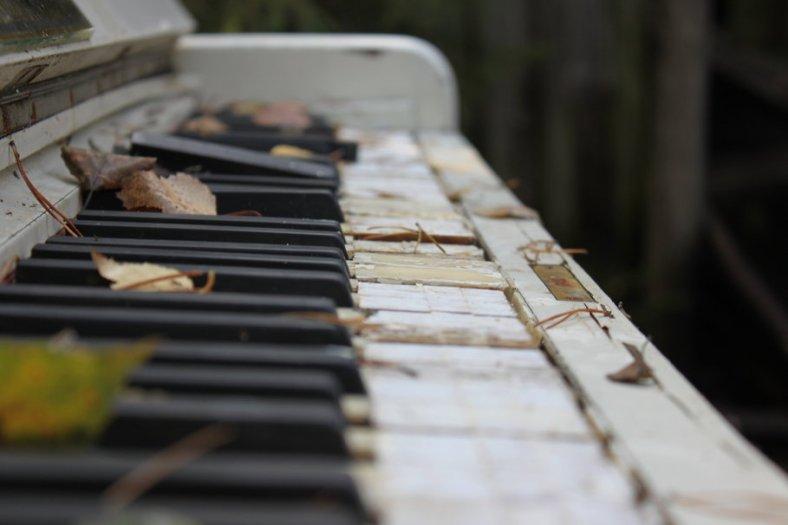 132733__photos-keys-piano-old-broken-leaves-autumn-macro-musical-instrument_p