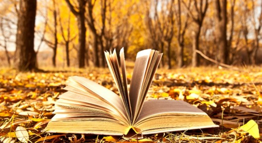 autunno1-982x540